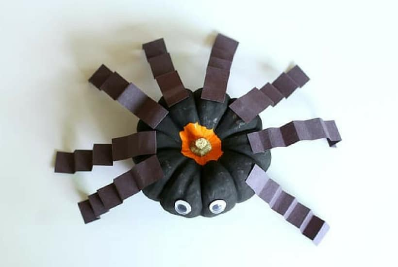spider craft pumpkin